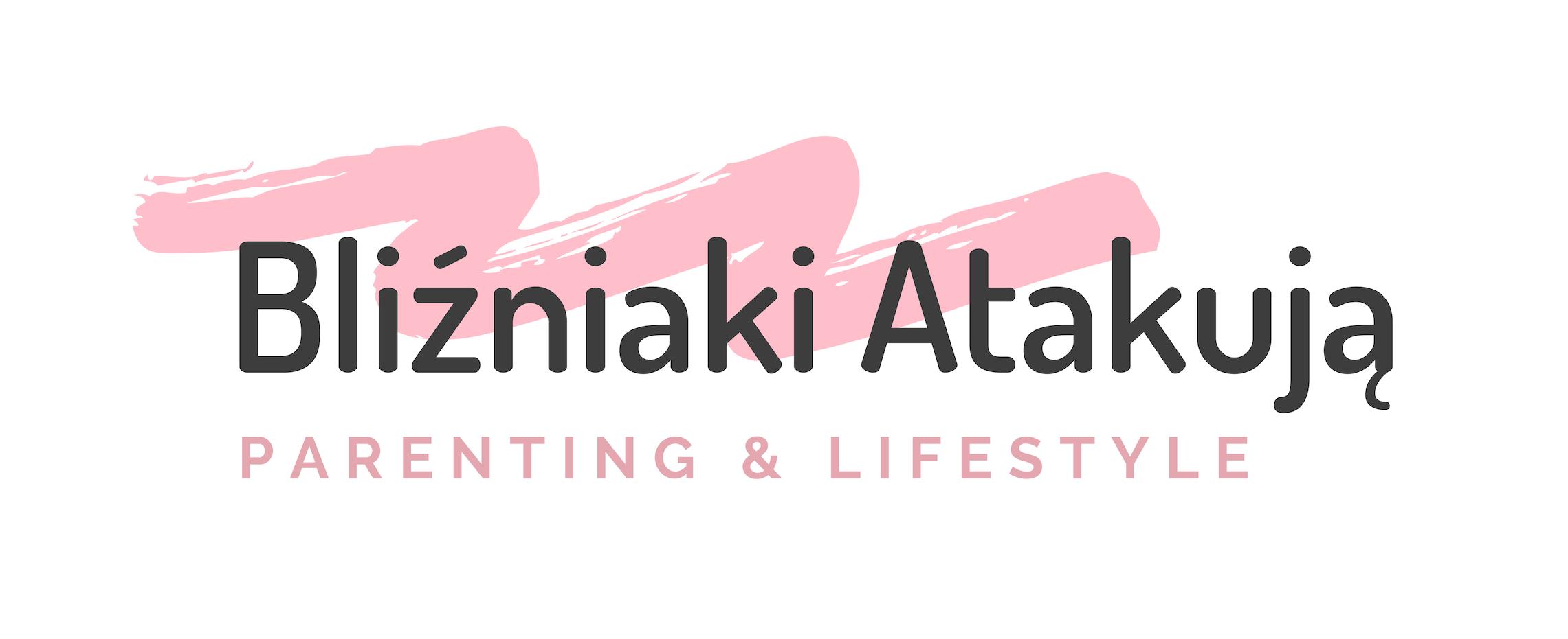 Bliźniaki Atakują – dziennik pokładowy